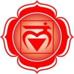 root chakra, earth chakra, stability, grounded, chakra balance, chakra alignment, rainbow light body, chakra system, life force